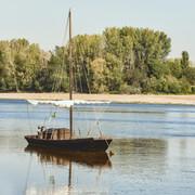 [Image: Voilierde-Loire-3-7-03.jpg]
