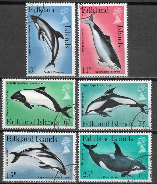 Wale-Falkland-295