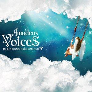 Compilations incluant des chansons de Libera Amadeus-Voices-300