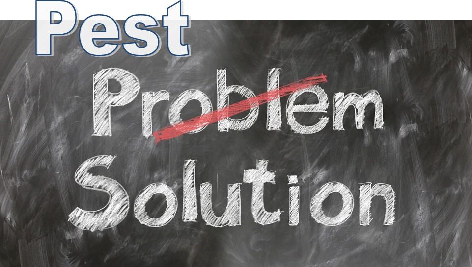 Pest-Solutions.jpg