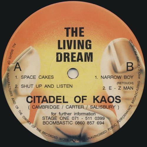 Download Citadel Of Kaos - Space Cakes mp3
