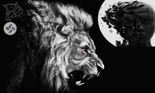 lion-k