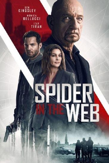 Pająk w sieci / Spider in the Web (2019)