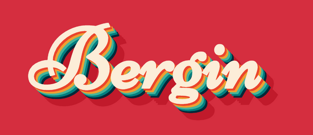 Bergin Tour Logo
