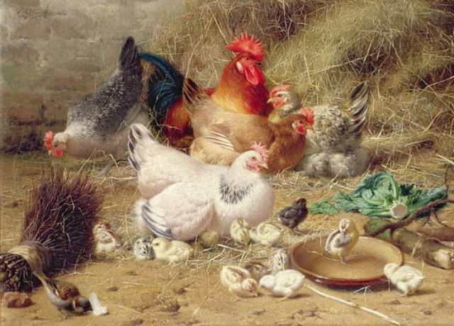 Eugene-Remy-Maes-Hens-roosting-with-thei