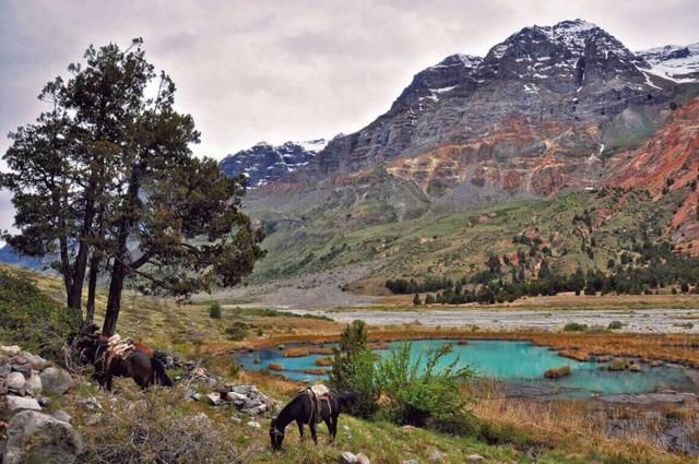 Ruta-del-Tricahue-paisaje-1160x770-min-1-1024x680
