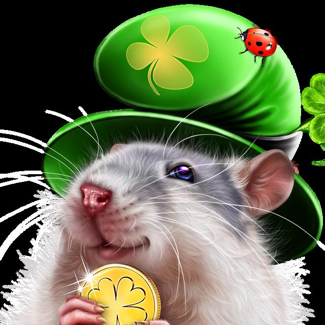 leprechaun-rat-14.png