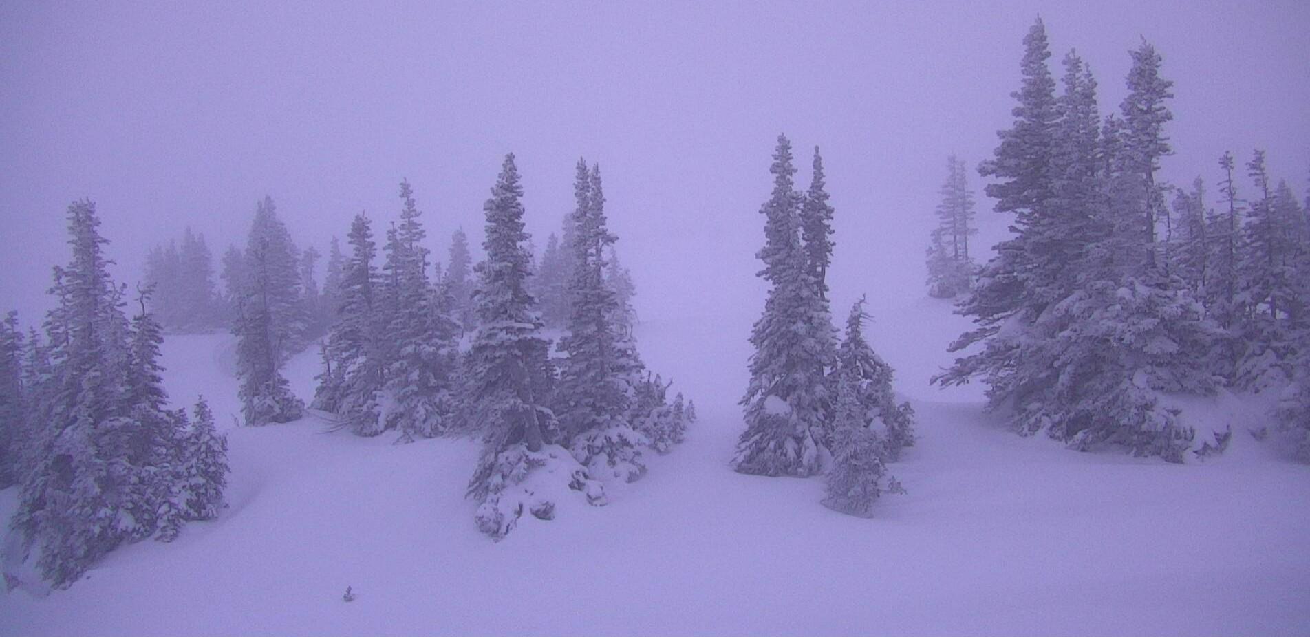 snow-today-gnt.jpg