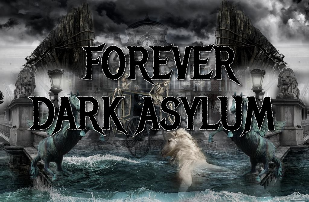 the-dark-asylum-by-ddimitri16-dd4n5rw-fullview