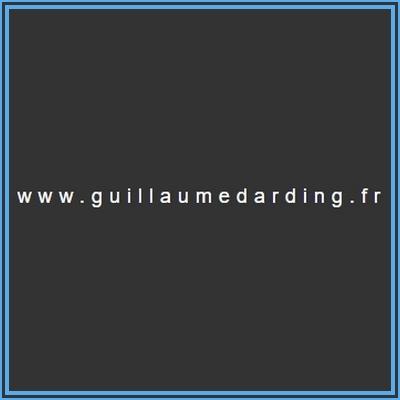 Guillaume-Darding-logo-1-1