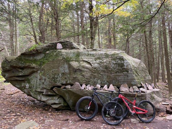 Кто-то сделал из этого огромного камня голову динозавра