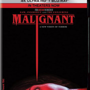 Malignant (2021) FullHD 1080p WEBrip HDR10 HEVC AC3 ITA/ENG - ItalyDownload
