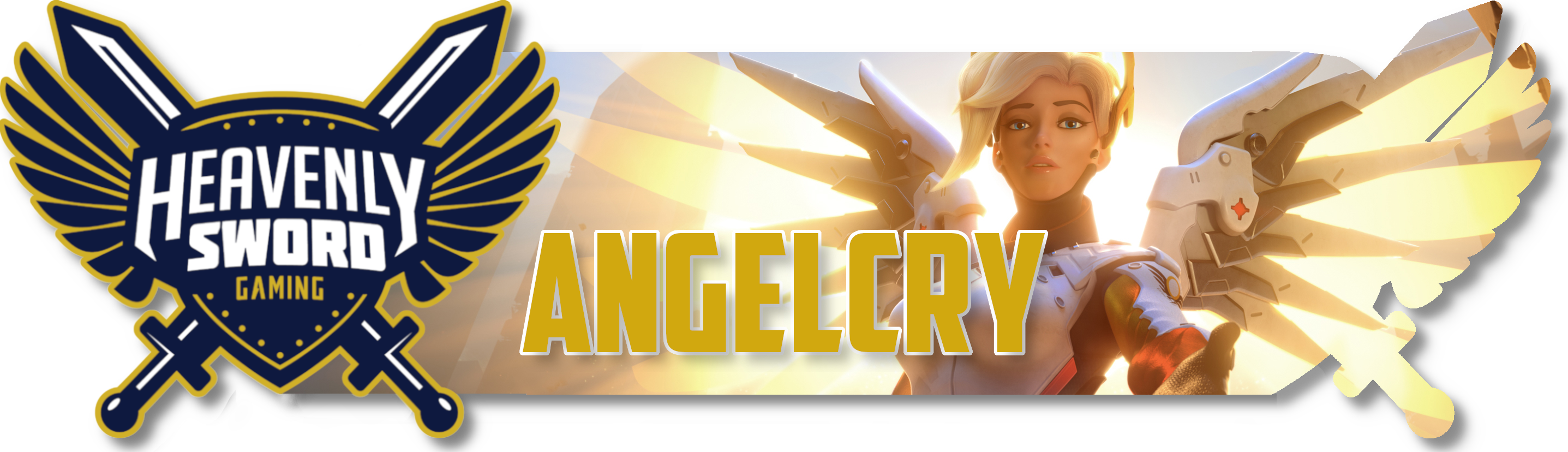 HSGNew-Signature-Format-Angelcry-April12th.png