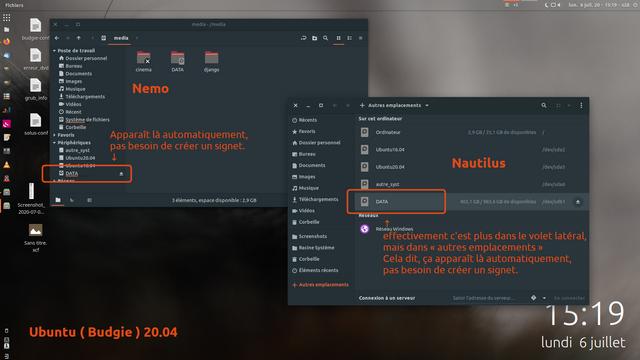 nemo-nautilus-media.png
