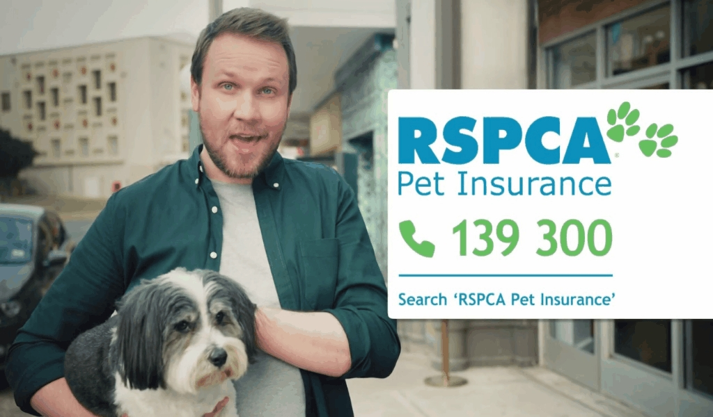 Neutral Article Shows 5 New Issues About Pets Insurance Reviews That No one Is Talking About