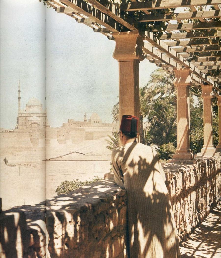fotografii National Geographic 71