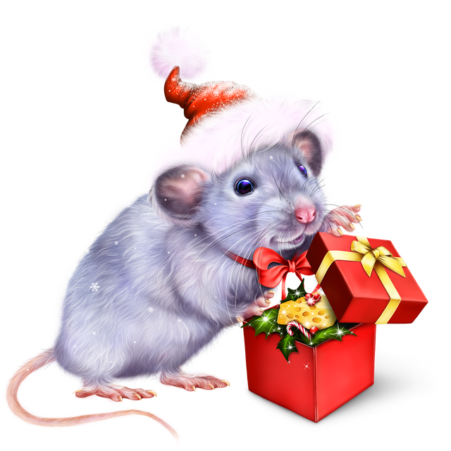 hristmas-Gift-for-a-Mouse-1