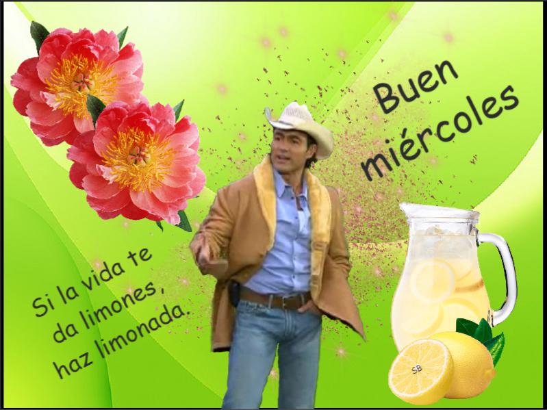 Mi-rcoles-limonada-JMM
