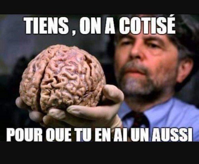 Cotisation-pour-cerveau.jpg