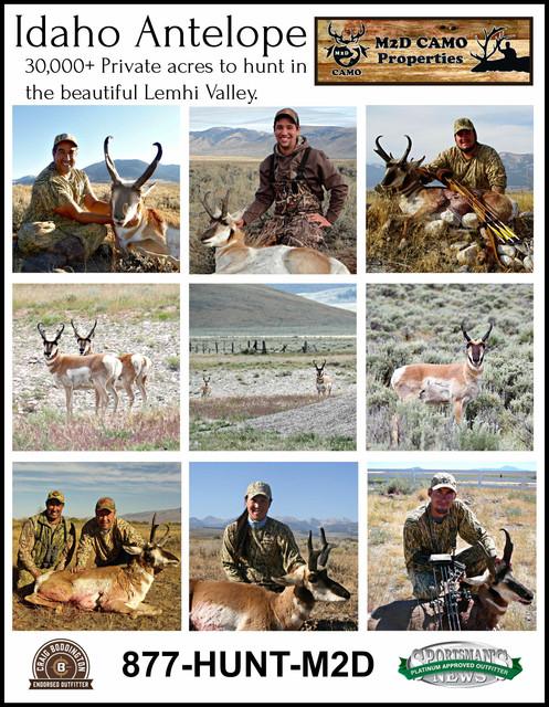 Idaho-2019-Antelope-Back