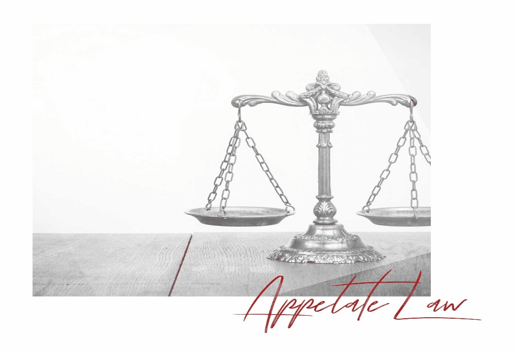 Experienced International Protecting Law Attorney