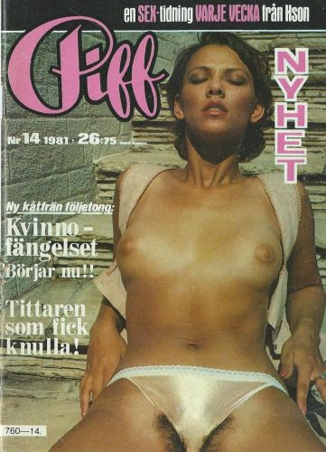 Cover: Piff No 14 1981