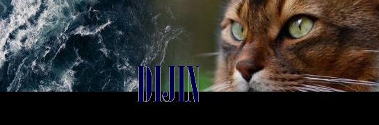 DIJIN-SIGJE