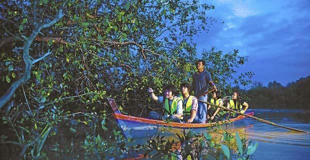 kampung-kuantan-firefly-park