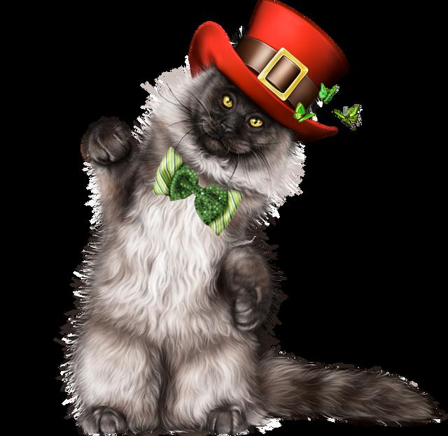 Leprechaun-Cat-With-Beer-41.png