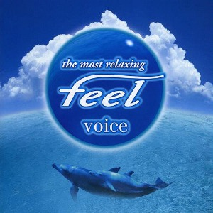 Compilations incluant des chansons de Libera The-most-relaxing-feel-voice-300