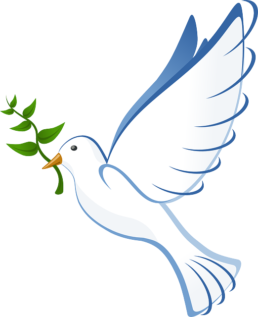 dove-41260-640.png