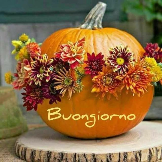 Buongiorno-con-la-zucca-di-halloween