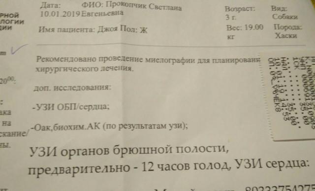 IMG-b8416ed1ecabbf551ec0d91a50d14a8b-V