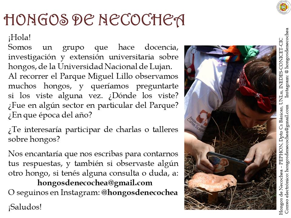 Folleto-Hongos-de-Necochea-1