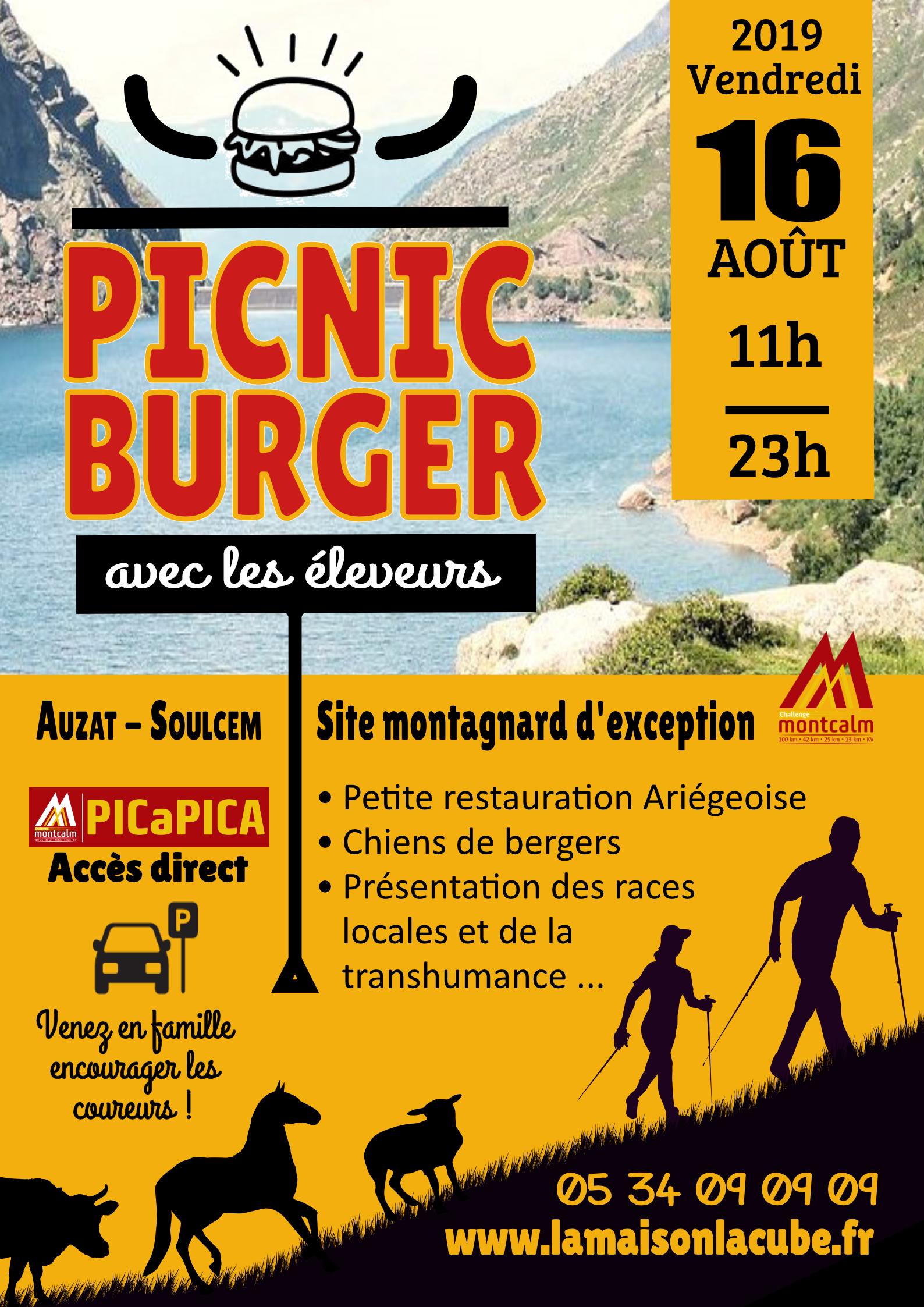 picnicburger