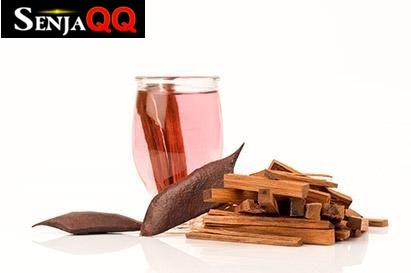 6 Manfaat Kayu Secang Selain Sebagai Campuran Minuman Rempah