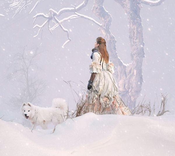 winter photographs 5