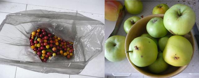 Nachschub-Obst