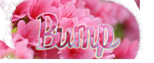 bump2.png