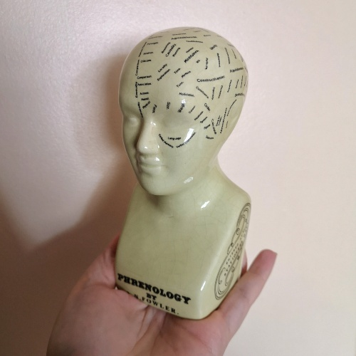 An image of a phrenology head ornament © Icy Sedgwick