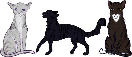 Dovekit of Thunderclan Siggycats