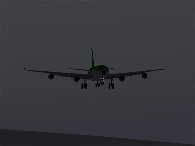 A330 of Froggie Air.jpg