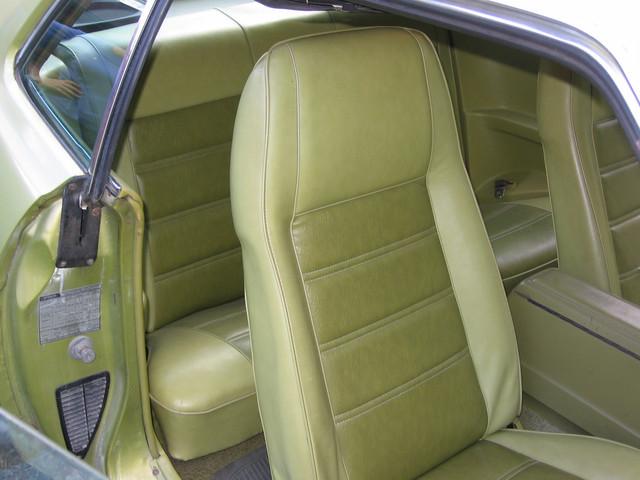 [Image: Nancy-s-Mustang-018.jpg]