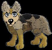Coyote-Crew