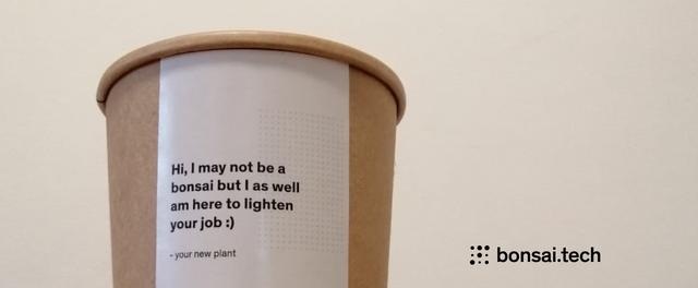 bonsai-tech-3-year-review