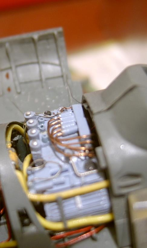 Hind-F1555.jpg