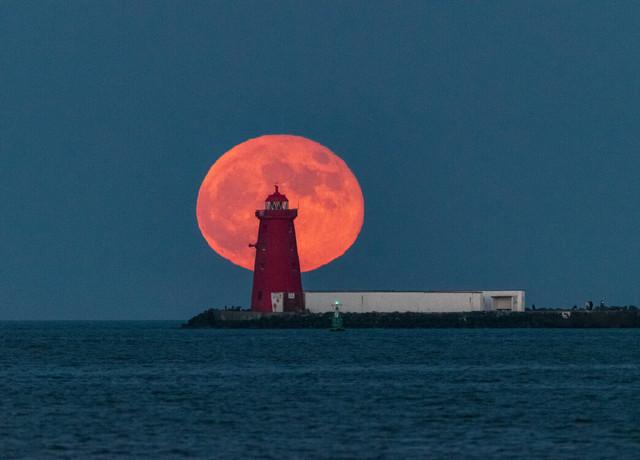 rsz-1rsz-poolbeg-flower-moonrise-26-may-2021.jpg