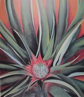 Georgia-O-Keeffe-pineapple-bud.jpg