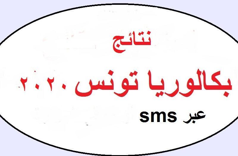"""""""سجل الأن"""".. education gov tn خطوات التسجيل في نتائج البكالوريا تونس دورة جوان عبر موقع أدونات edunet.tn"""