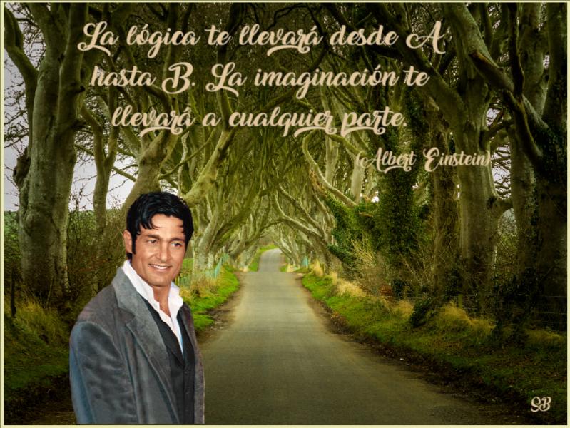 Imaginaci-n
